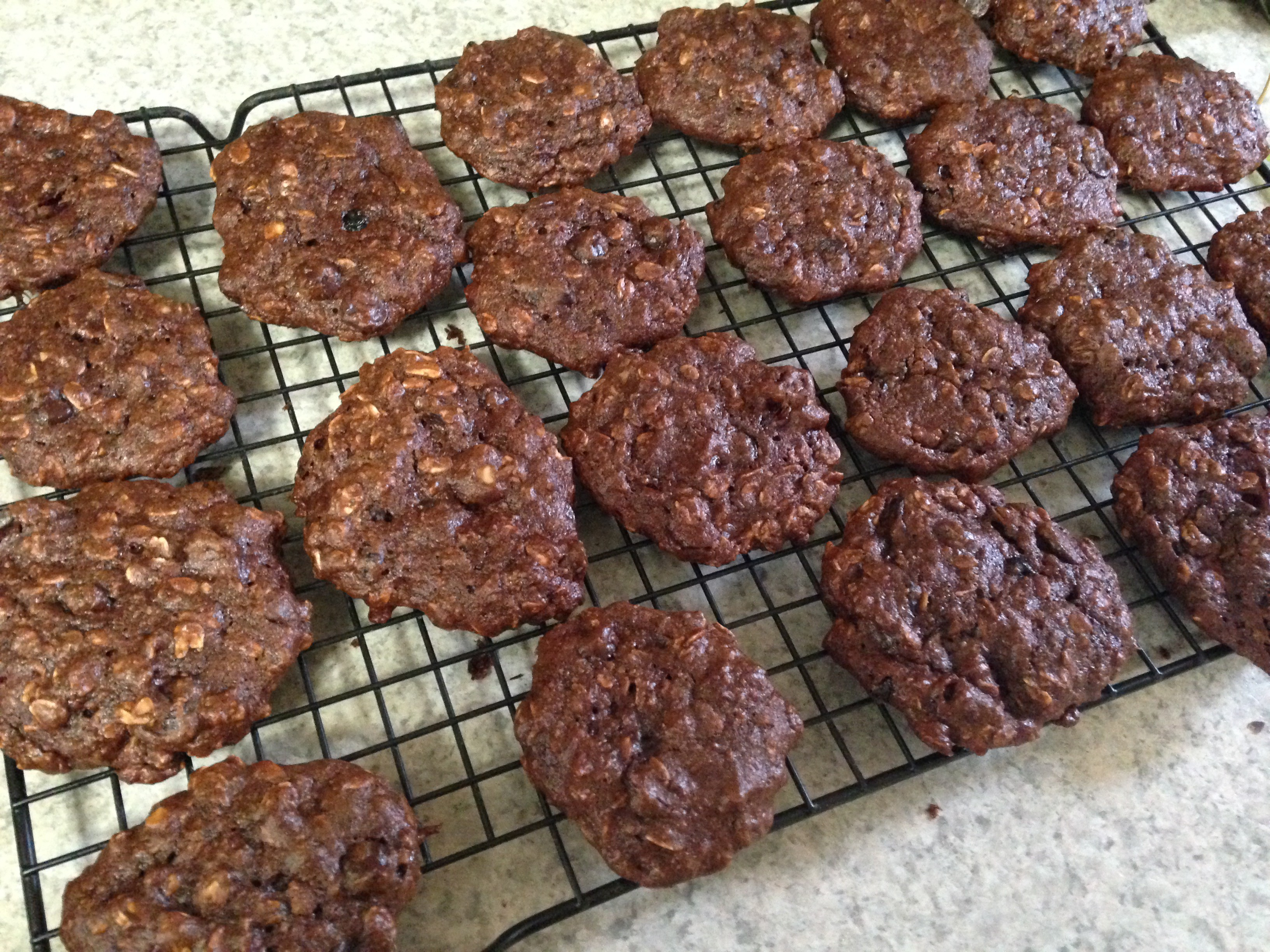 Banana Oat Nut Protein Cookies (with or without chocolate, with gluten ...